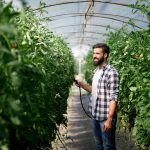 Unsere Weiterbildung für den Sachkundenachweis im Pflanzenschutz| Kompass24